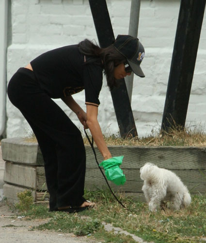 celebs-picking-up-dog-doo-eva-longoria-parker
